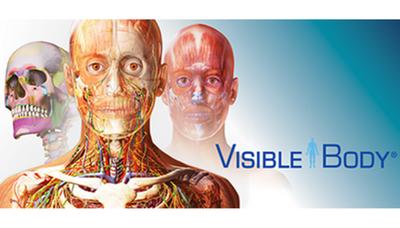 Visible body : découvrez le corps humain de l'intérieur