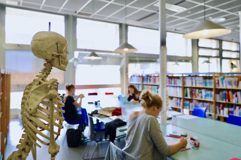 BU Médecine - Pasteur