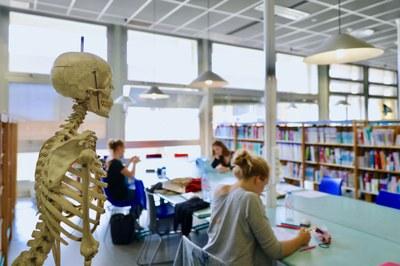 BU Médecine -Pasteur